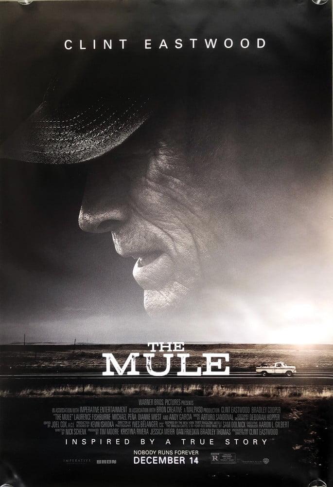 Mule2