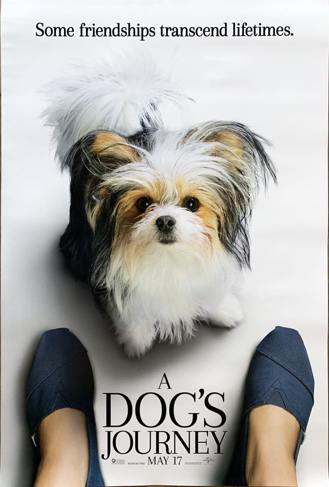 Dogsjourney4 1
